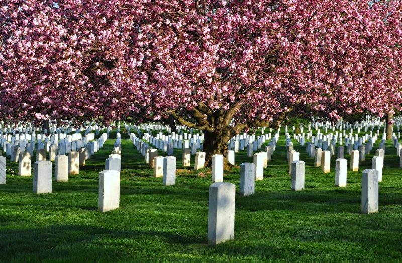 funeral homes in Bay City, MI